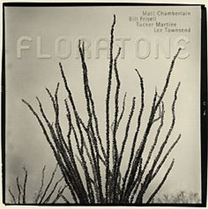 Bill Frisell - Floratone [Matt Chamberlain, Bill Frisell, Tucker Martine, Lee Townsend] CD (album) cover