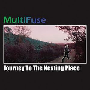 Multifuse Journey To The Nesting Place album cover