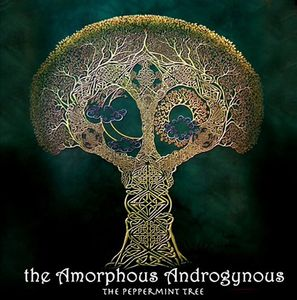 The Amorphous Androgynous The Peppermint Tree and Seeds of Superconciousness album cover