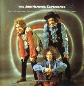 Jimi Hendrix Can You Please Crawl Out Your Window? album cover