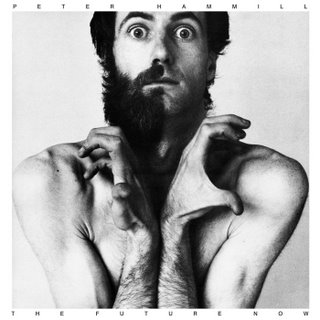 Peter Hammill - The Future Now CD (album) cover