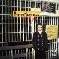 Peter Hammill After The Show (A Collection) album cover