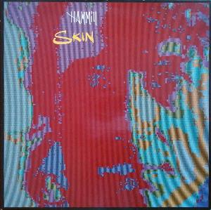 Peter Hammill - Skin CD (album) cover