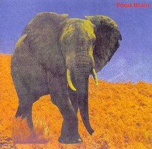 Food Brain - Bansan (Social Gathering) CD (album) cover