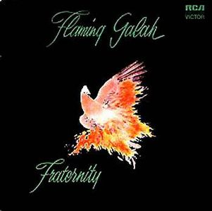 Flaming Galah by FRATERNITY album cover