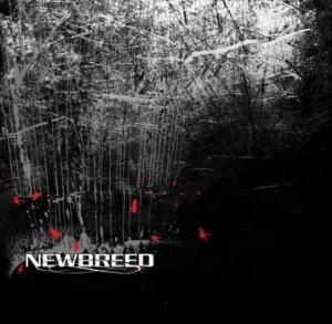 NeWBReeD by NEWBREED album cover