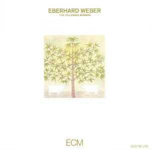 The Following Morning by WEBER, EBERHARD album cover