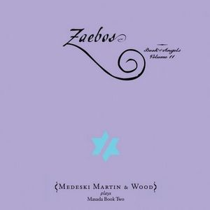 Medeski  Martin & Wood - Zaebos CD (album) cover