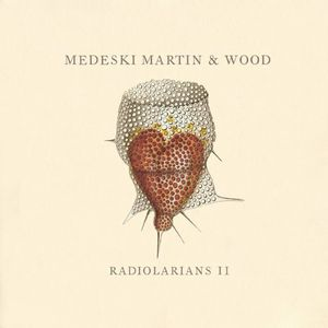 Medeski  Martin & Wood - Radiolarians II CD (album) cover