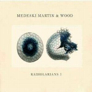 Medeski  Martin & Wood - Radiolarians I CD (album) cover
