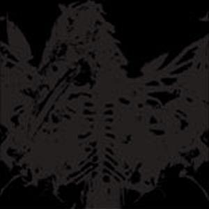Gameness / Amenra* Amen Ra·/ Gantz / Vuur - 4 Ways Split CD #1