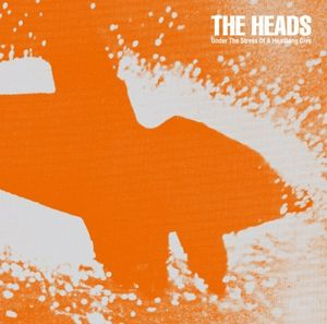 The Heads Under The Stress Of A Headlong Dive album cover