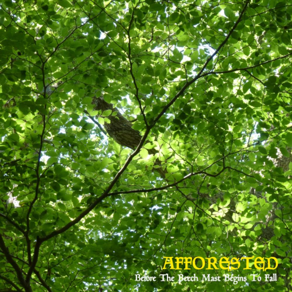 Afforested Before the Beech Mast Begins to Fall album cover