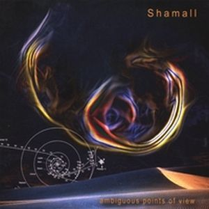 Shamall Ambigious Points of View album cover