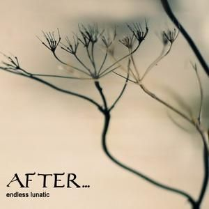 After... Endless Lunatic album cover