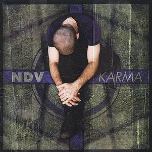 Nick D'Virgilio Karma album cover
