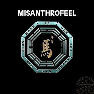 Misanthrofeel by MISANTHROFEEL album cover