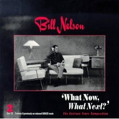 Bill Nelson What Now What Next album cover