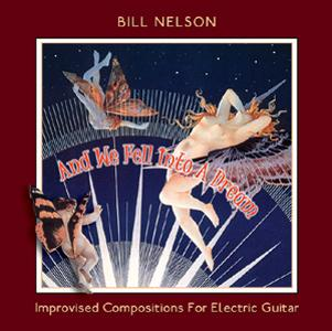 Bill Nelson And We Fell Into A Dream album cover