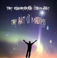 The Psychedelic Ensemble - The Art of Madness CD (album) cover