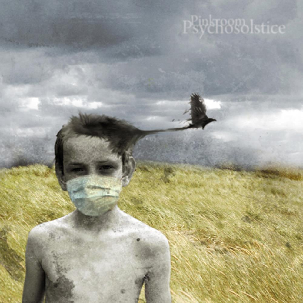 Psychosolstice by PINKROOM album cover