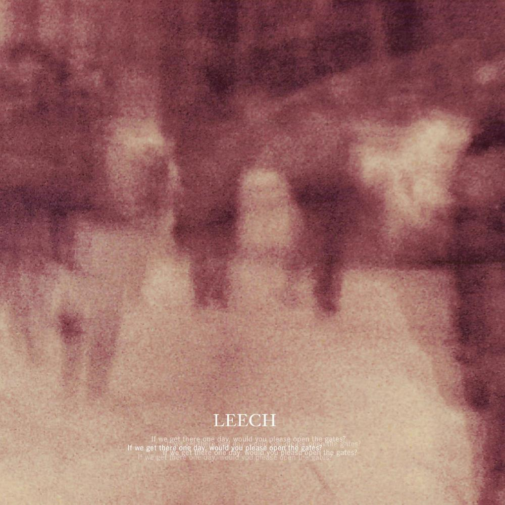 If We Get There One Day, Would You Please Open The Gates ? by LEECH album cover