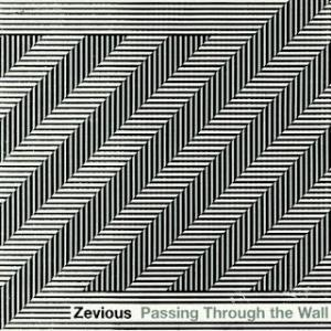 Passing Through The Wall by ZEVIOUS album cover