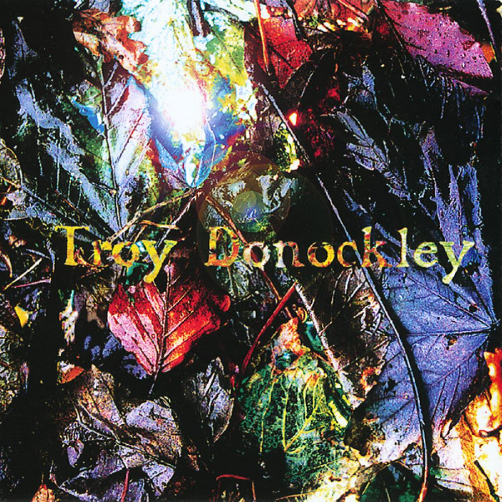 Troy Donockley The Unseen Stream album cover