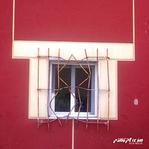 Live @ Windows by PANOPTICON album cover