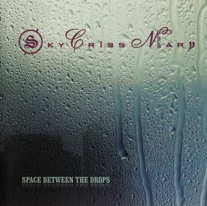 Space Between The Drops by SKY CRIES MARY album cover