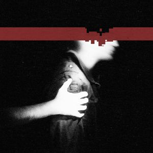 Nine Inch Nails The Slip album cover