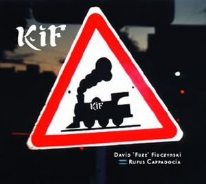 David Fiuczynski KiF album cover