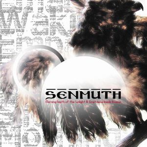 Senmuth Morning Depth of the Sunlight and Emptiness album cover