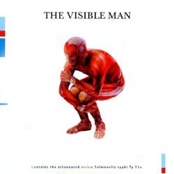 David Byrne The Visible Man album cover