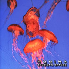 Numina Symbiotic Spaces album cover