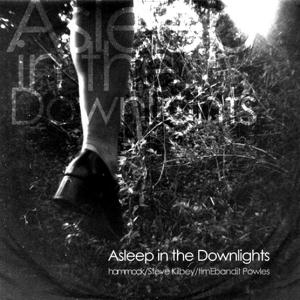 Asleep In The Downlights by HAMMOCK album cover