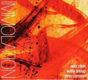 Nels Cline - Immolation / Immersion ( with  Wally Shoup  / Chris Corsano) CD (album) cover
