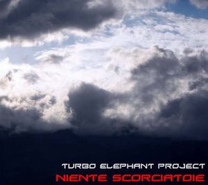 Niente Scorciatoie by TURBO ELEPHANT PROJECT album cover