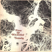 Strawbs - From The Witchwood CD (album) cover