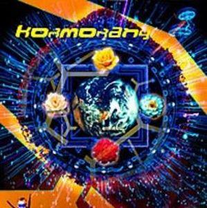 Teraz by KORMORANY album cover