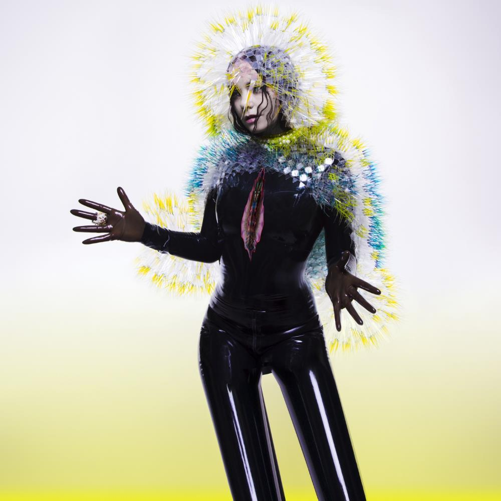 Vulnicura by BJÖRK album cover