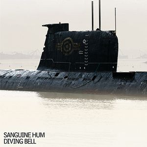 Diving Bell by SANGUINE HUM album cover