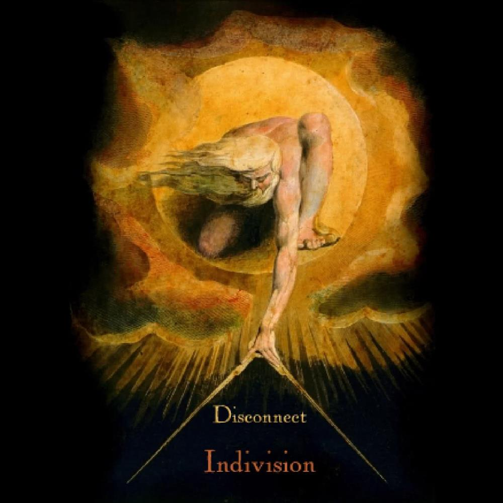 Indivision by DISCONNECT album cover