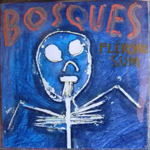 Pléroma Sum by BOSQUES album cover