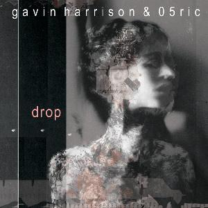 Gavin Harrison & 05Ric - Drop CD (album) cover