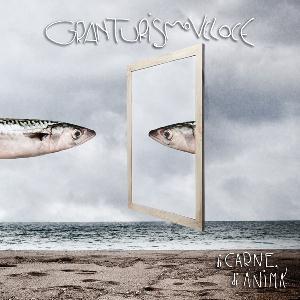 Di Carne, Di Anima by GRAN TURISMO VELOCE album cover