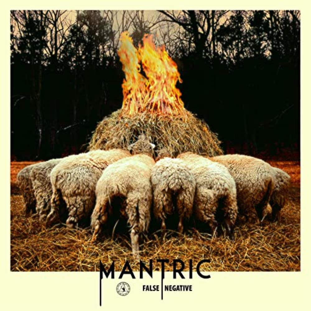 False Negative by MANTRIC album cover