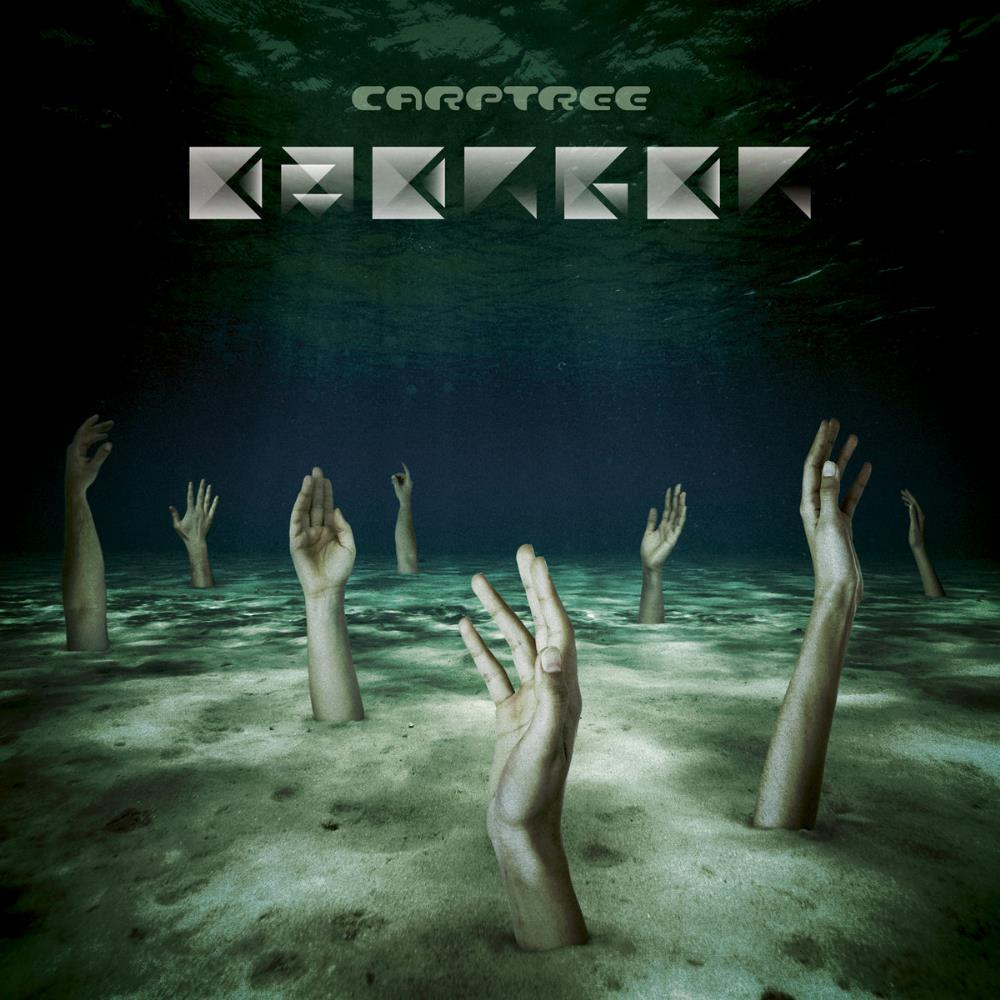 Emerger by CARPTREE album cover