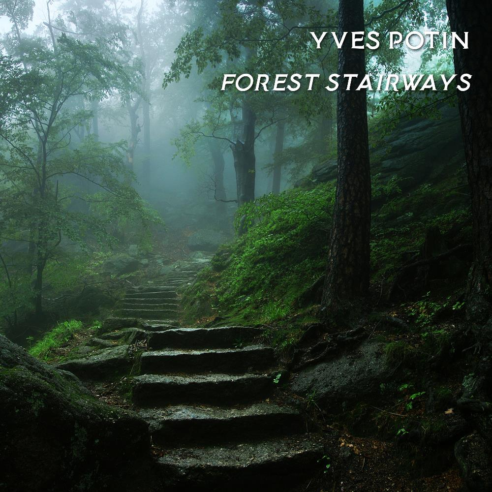 Forest Stairways by JAZZCOMPUTER.ORG album cover