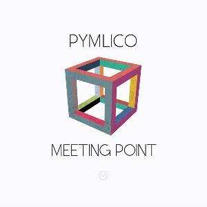 Meeting Point by PYMLICO album cover